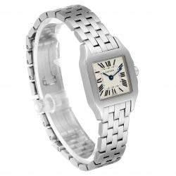 Cartier Silver Stainless Steel Santos Demoiselle W25064Z5 Women's Wristwatch 20 x 20 MM