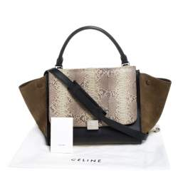 Celine Multicolor Python/Suede and Leather Medium Trapeze Top Handle Bag