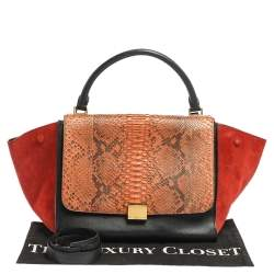 Celine Multicolor Python,Suede and Leather Medium Trapeze Bag