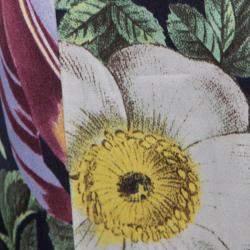 Class by Roberto Cavalli Floral and Polka Dot Print Maxi Skirt XS