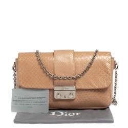 Dior Nude Snakeskin New Lock Pouch Chain Clutch