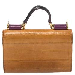 Dolce & Gabbana Multicolor Eel Leather and Snakeskin Miss Sicily Von Wallet on Chain