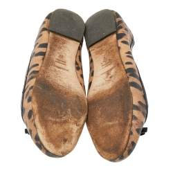 Dolce & Gabbana Brown Leopard Print Coated Canvas Bow Detail Ballet Flats Size 37