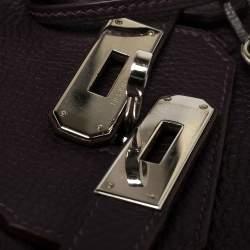 Hermes Raisin Clemence Leather Palladium Hardware Birkin 30 Bag