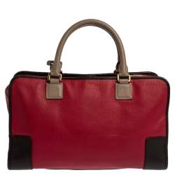 Loewe Tri Color Leather Amazona Satchel