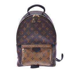 Louis Vuitton Monogram Canvas Palm Springs Backpack