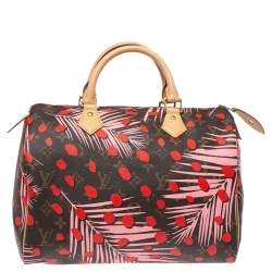 Louis Vuitton Monogram Canvas Limited Edition Jungle Dots Speedy 30