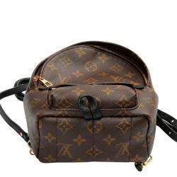 Louis Vuitton Brown Monogram Canvas Palm Springs Mini Backpack Bag