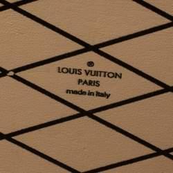 Louis Vuitton Metallic Gold/Silver Epi Leather Petite Malle Bag
