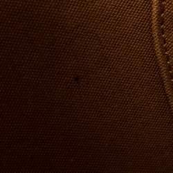 Louis Vuitton Monogram Canvas and Leather Ellipse PM Bag