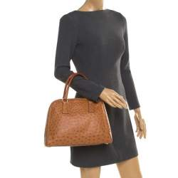 Prada Brown Ostrich Pyramid Frame Top Handle Bag