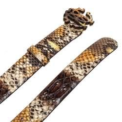 Roberto Cavalli Brown Python Logo Buckle Belt 90CM