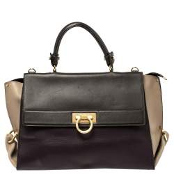 Salvatore Ferragamo Multicolor Leather Large Sofia Top Handle Bag