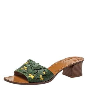Bottega Veneta Green Intrecciato Leather Butterfly Applique Ravello Slides Size 41