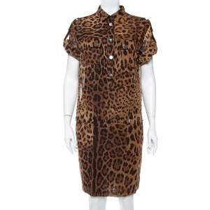 Dolce & Gabbana Brown Animal Printed Cotton Collared Shift Dress L