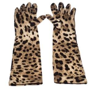Dolce & Gabbana Brown Leopard Print Wool Long Gloves S