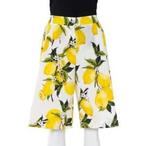 Dolce & Gabbana White Lemon and Floral Printed Cotton Bermuda Shorts S