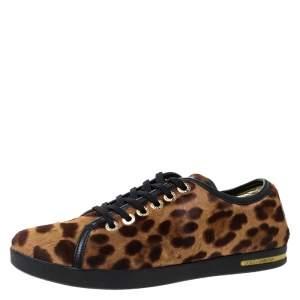 Dolce & Gabbana Brown Leopard Print Calf Hair Low Top Sneakers Size 37.5