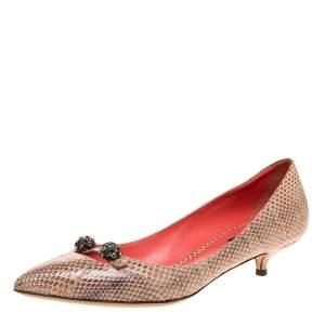 Dolce & Gabbana Beige Snakeskin Bellucci Kitten Heel Pointed Pumps Size 39