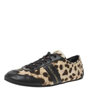 Dolce & Gabbana Brown/Black Leopard  Print Canvas And Leather Canvas Low Top Sneakers Size 36