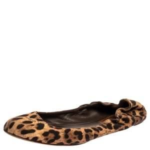 Dolce & Gabbana Beige/Brown Leopard Print Canvas Scrunch Ballet Flats Size 41