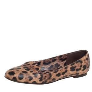Dolce & Gabbana Brown Leopard Print Coated Canvas Ballet  Flats Size 39