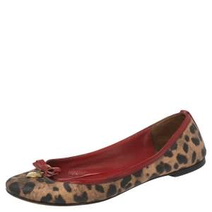 Dolce & Gabbana Brown Leopard Print Coated Canvas and Patent Leather Bow Detail Ballet Flats Size 39
