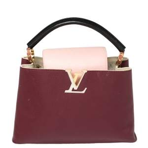 Louis Vuitton Multicolor Taurillon Leather Capucines PM Bag