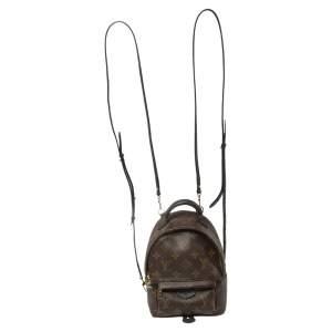 Louis Vuitton Monogram Canvas Mini Palm Springs Backpack