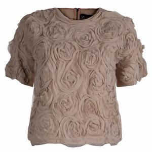 Elizabeth and James Beige Chiffon Floral Applique Cropped Top XS