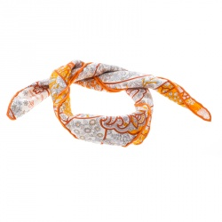 Hermes Orange Au Pays des Oiseaux Fleurs Printed Silk Pocket Square