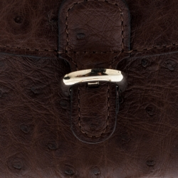 Delvaux Brown Ostrich Brilliant Bag Charm