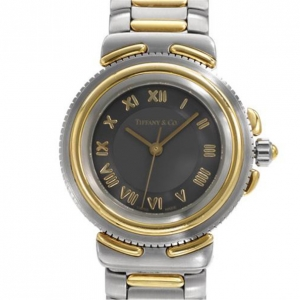Tiffany & Co Stainless Steel with Gold Inlay watch