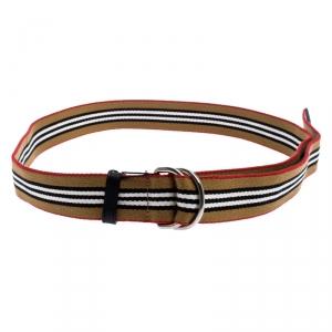Burberry Multicolor Icon Stripe Canvas D-Ring Buckle Belt L
