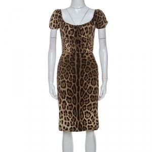 Dolce & Gabbana Leopard Print Cotton Blend Lace Trim Detail Dress XS