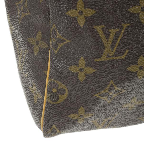 Louis Vuitton Monogram Canvas Speedy 25