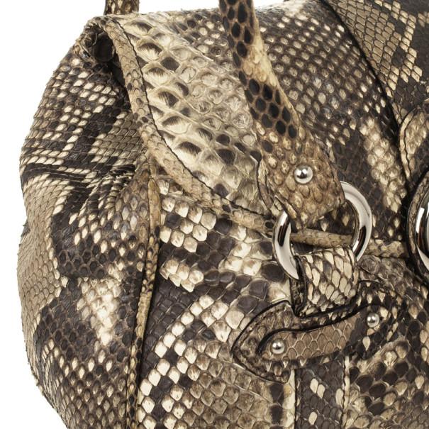 Dior Python St. Germain Flap Bag