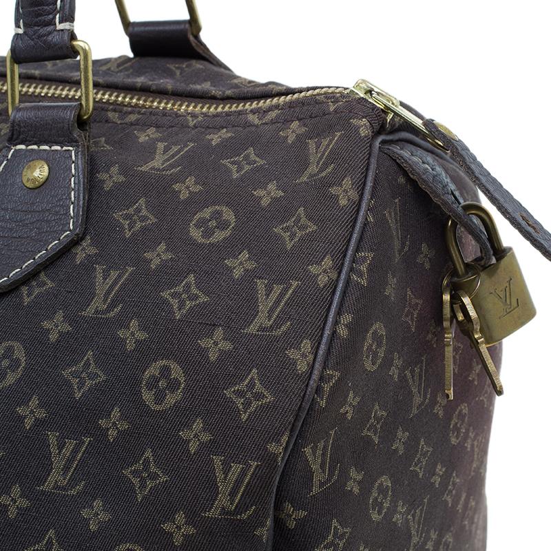 Louis Vuitton Monogram Mini Lin Speedy 30