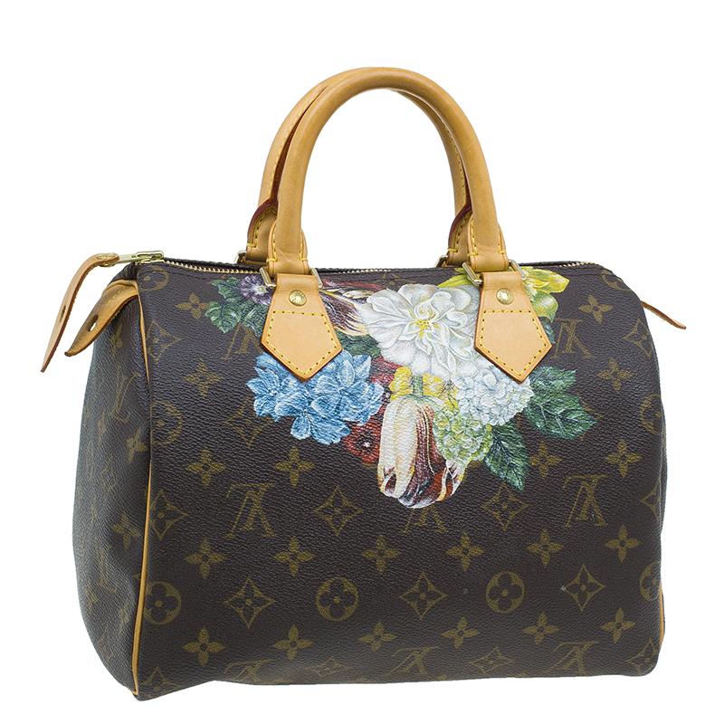 Louis Vuitton Monogram Canvas Hand Paint Speedy 25 Bag