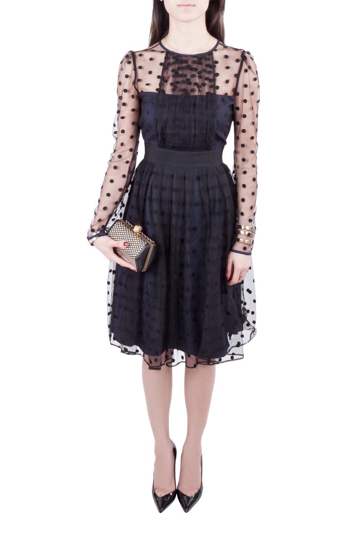 فستان آليس باي تيمبيرلي سيليا طبقة شبك شفاف بولكا دوت أزرق كحلي و أسود S